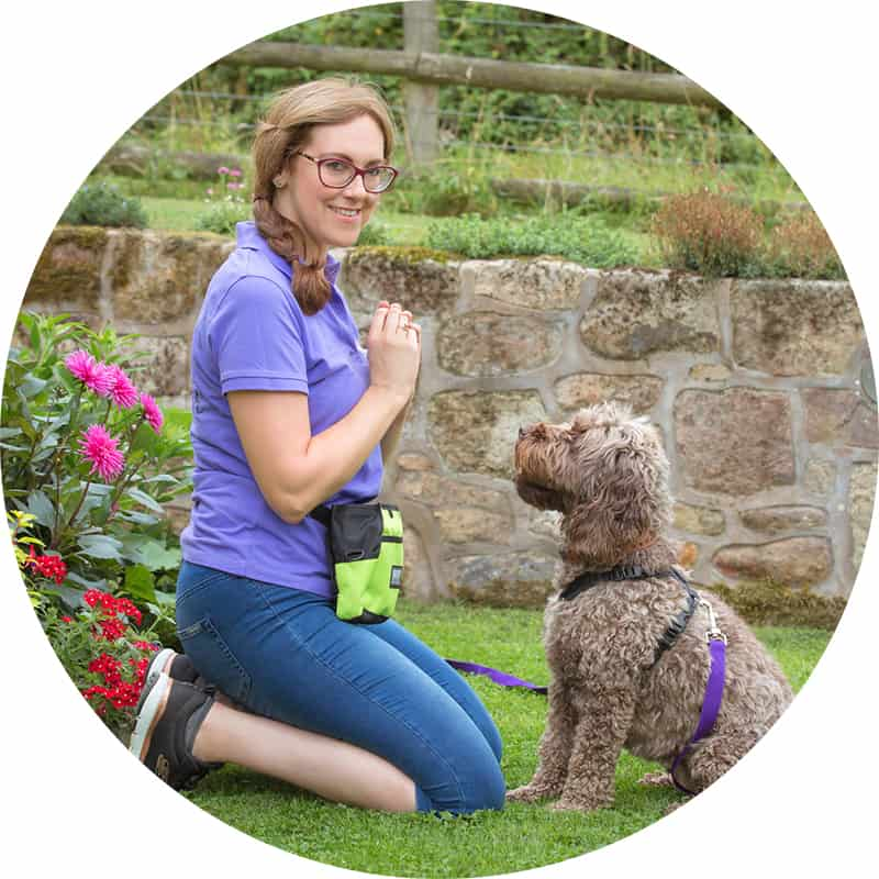 Hayley Miles Halo Pups Dog Trainer with cockapoo
